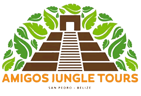 Amigos Jungle Tours Belize
